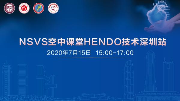 NSVS空中课堂HENDO技术深圳站